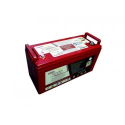 Sterling Lithium Iron Phosphate Battery with BMS and safety shutdown